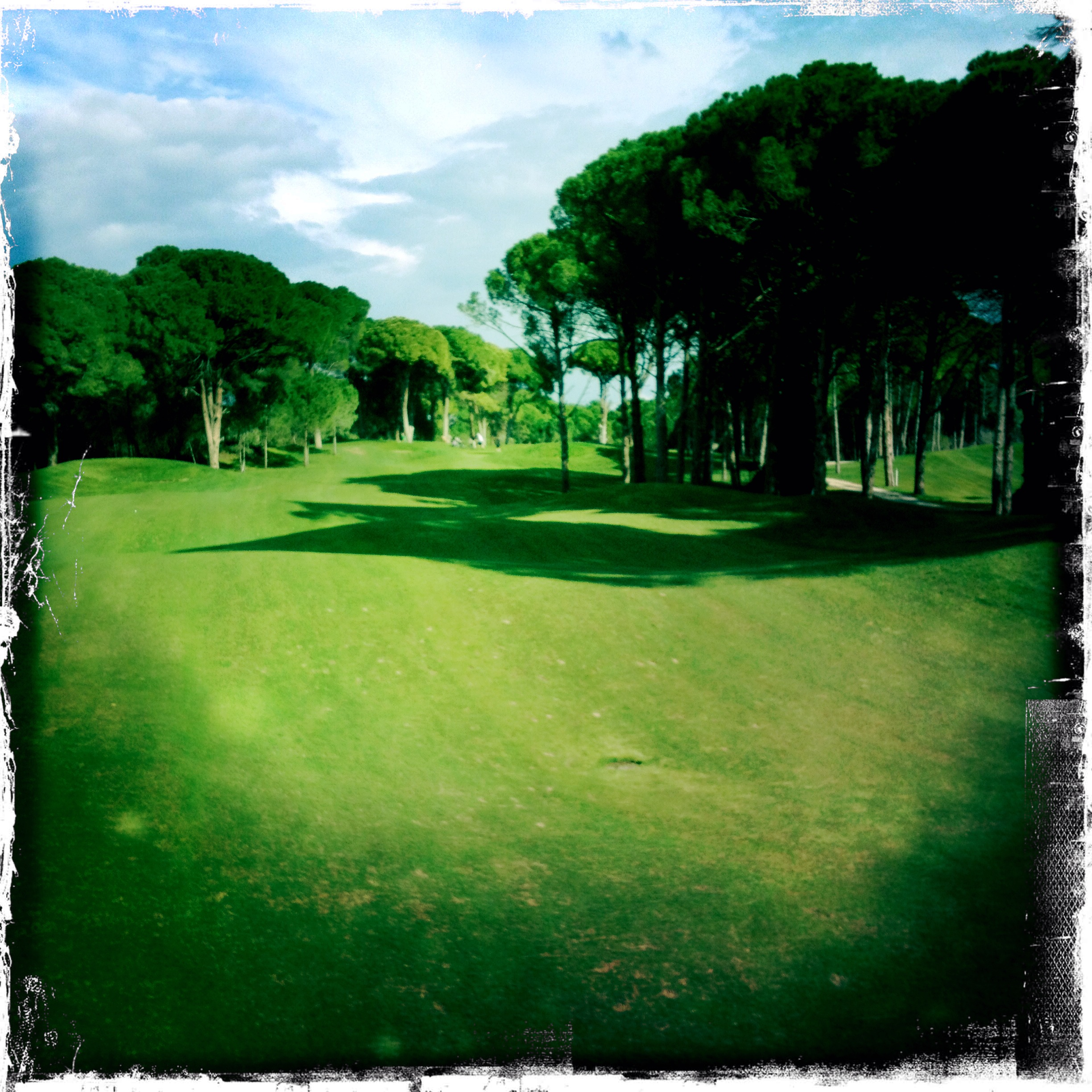 Pines Course Sueno