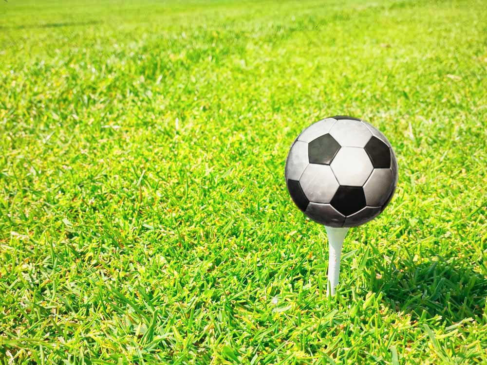 König Fussball und der Sport