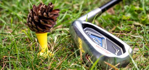 Kiefernzapfen als Golfball-Ersatz. Fertig ist die Garten-Driving Range ;)